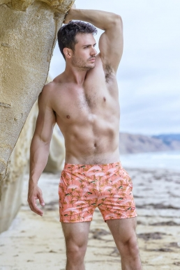 Dolphin Cute Print Swim Shorts